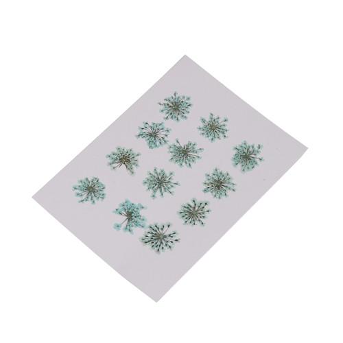 Sušené květy 2 - 2,5cm * modré * 2ks