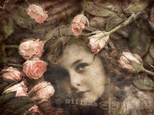 Dívka a růže