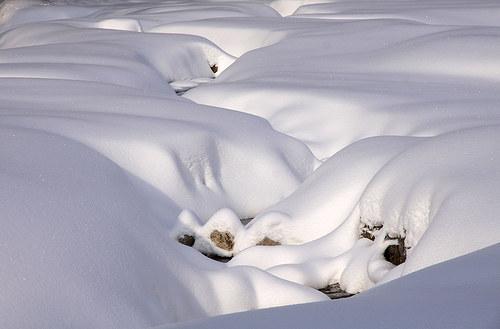 """Fotografie \""""Sněhová peřina\"""""""