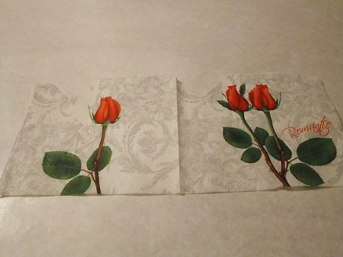 Květiny - růže 38.
