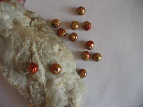 perličky