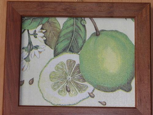 Obrázek s citróny