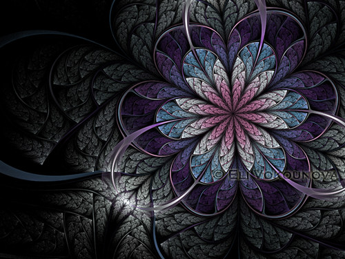 Melancholický květ