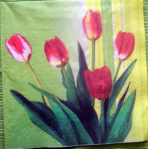 Tulipány v zelené