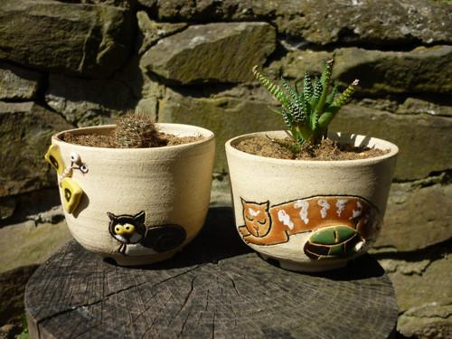 Květináčky kočičí mini!.