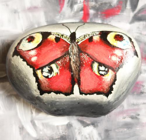 Motýl na kameni