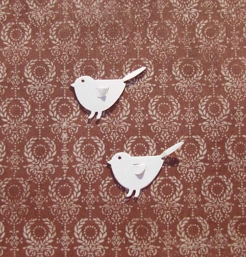 Dva brhlíci s křídly