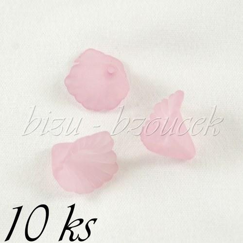 Růžová kala - 10ks