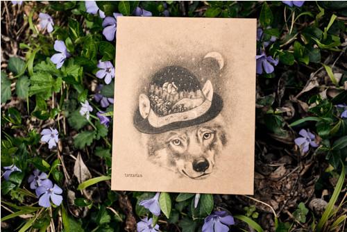 Vlk s kloboukem • pohlednice kraftová