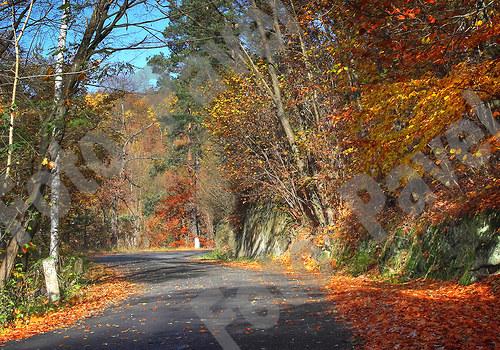 Barvy podzimu - Kokořínsko 4