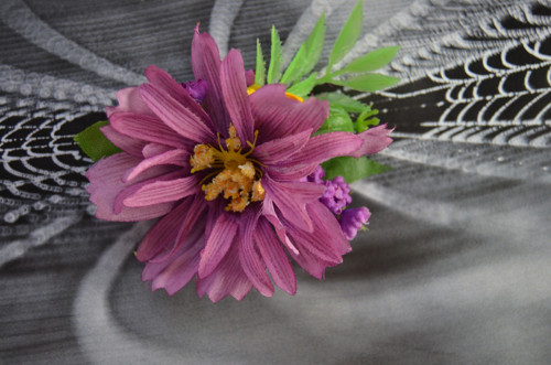 Růžová střapatice - pineta