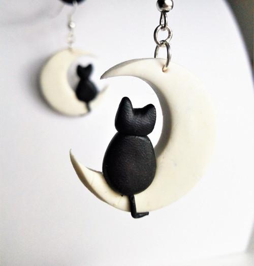 Náučnice -  kočka na měsíci