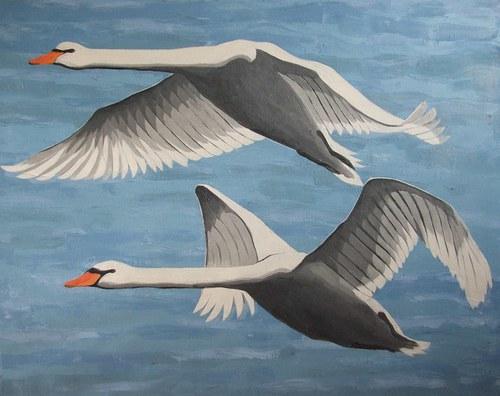 Labutě, olej na plátně 100 x 120 cm