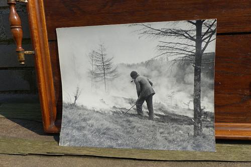 Vypalování pastviny... stará větší fotografie