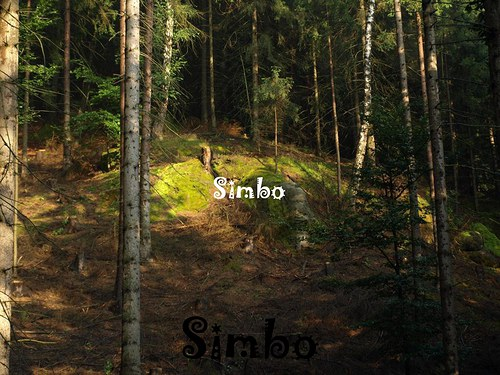 V lese SLEVA