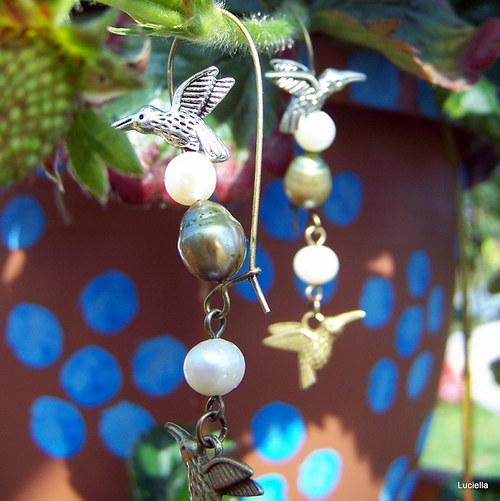 Kolibříčci na perlových vajíčkách II.