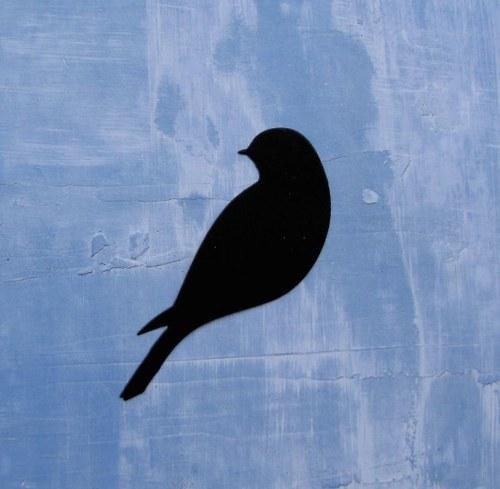 Elegantní sedící ptáček (vlaštovka)
