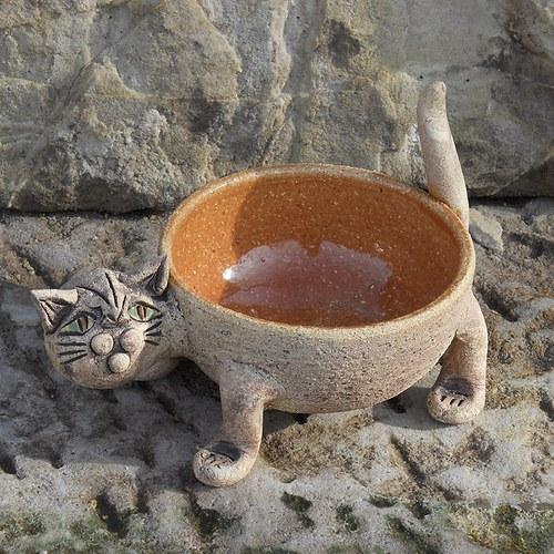 Obal na květinu kočka