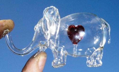 zamilovaná slonice