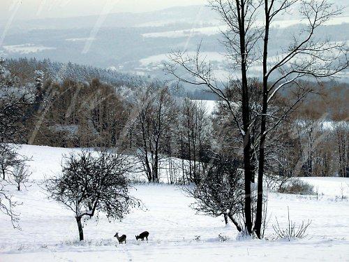 Zima je dlouhá.,II.