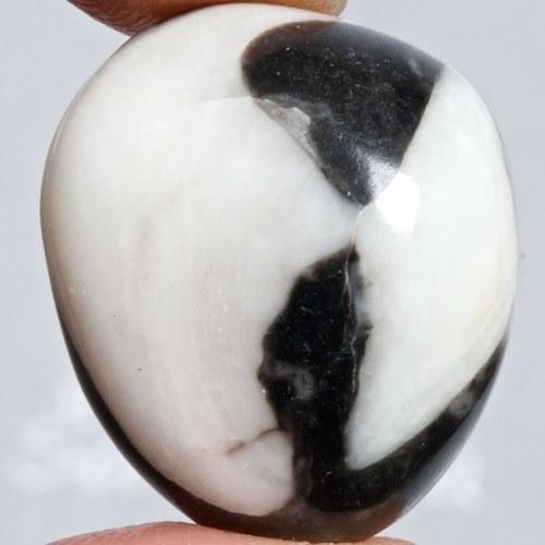 Mušlový kámen
