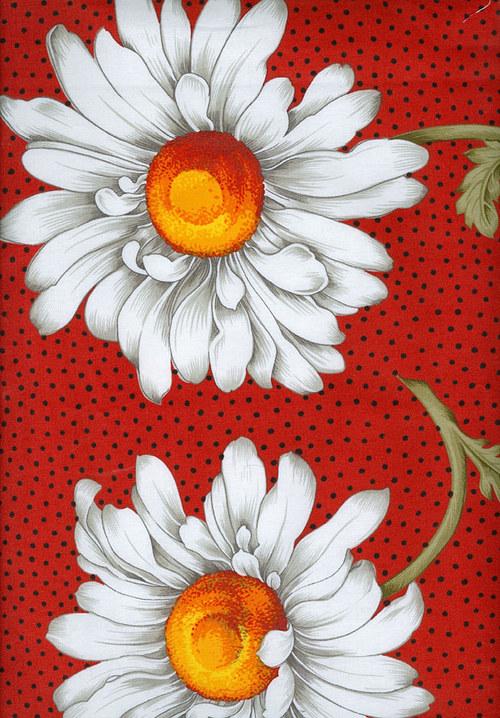 466 - Daisy Delight 586-03