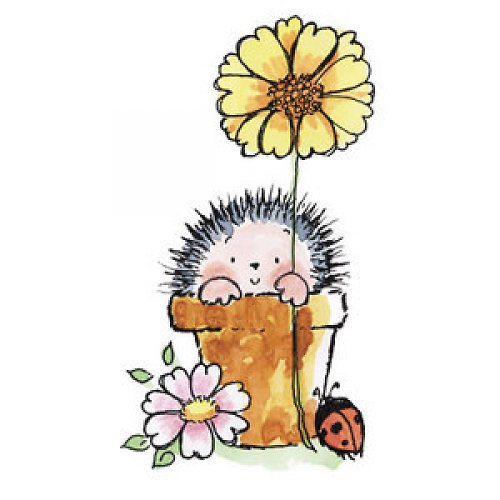 Ježek s květinkou/Greetings