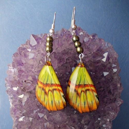 Náušnice motýl - mot51