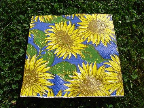 Ubrousek slunečnice