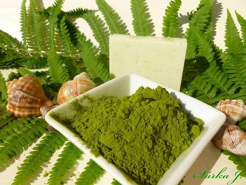chlorella - přírodní řasa do kosmetiky a mýdel