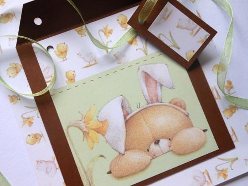 Zajíček vyhlíží jaro -  obal na CD 13x14 cm