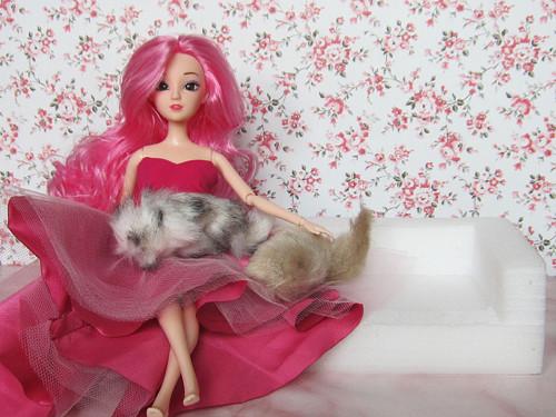 Kočičky pro barbie