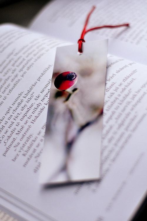 Já ráda čtu ...II