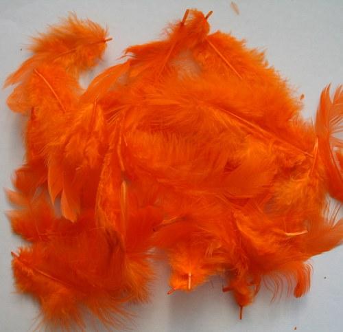 Peří oranžové - 20 ks