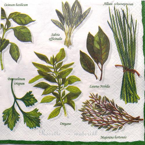 Zelené koření - ubrousek velký