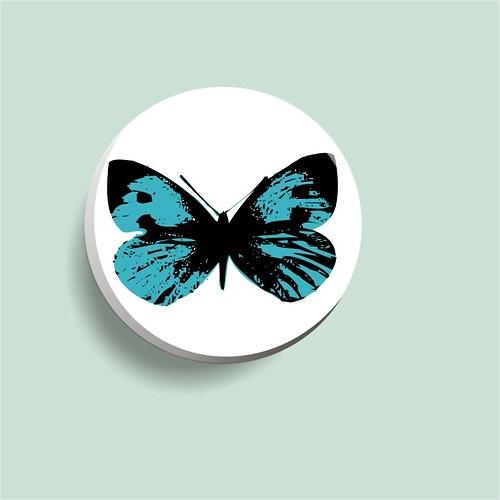 placka modrý motýl