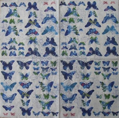 Motýlci modří č. 2070