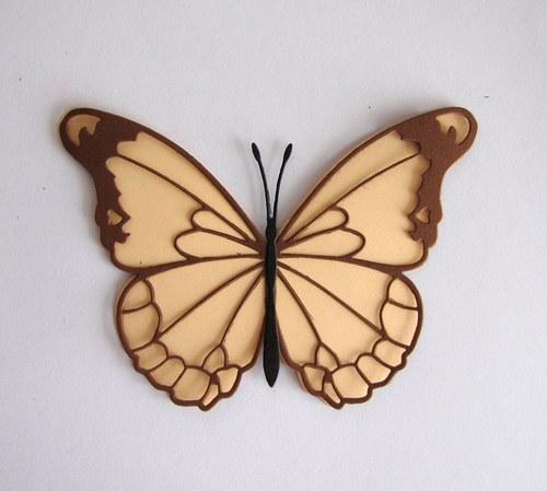 Motýl velký