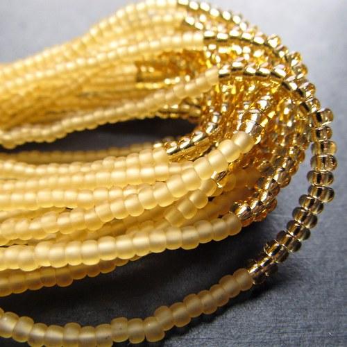 Náramek korálkovkáč zlatavý