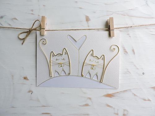 Svatební blahopřání kočky...