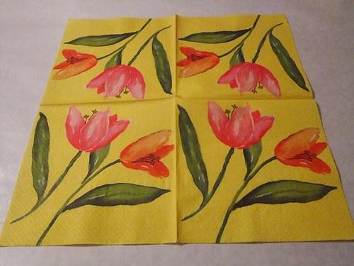 Květiny - tulipány 21.
