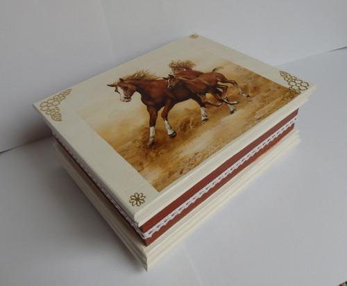 Śperkovnice kůň