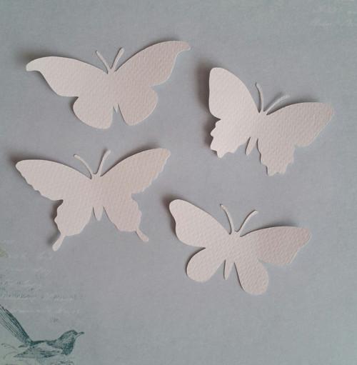 Sada motýlů