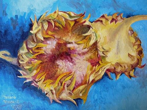 Utržené slunečnice(volná kopie).