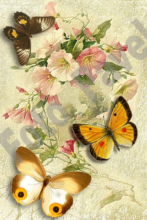 Vintage motiv - květiny s motýlky