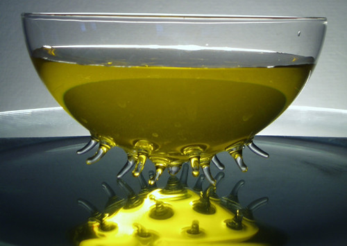designová MISKA nebo KRYT na sýry,máslo,....