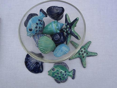 modré mořské plody
