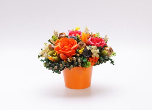 Oranžovo-zelená