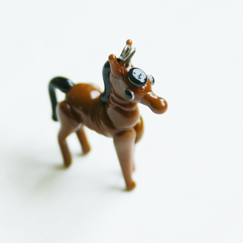 Koník hnědý