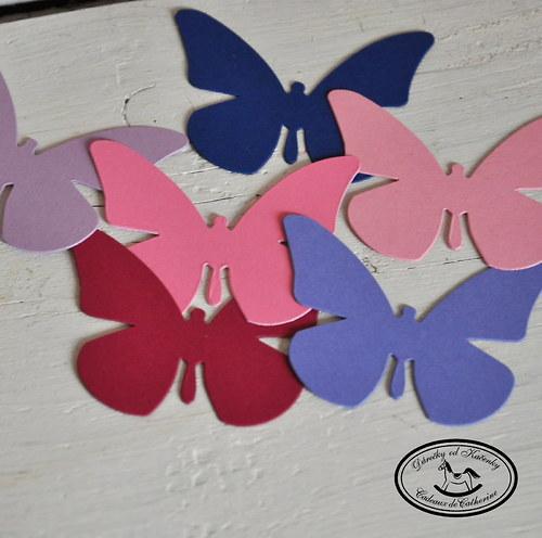Motýlci barevní
